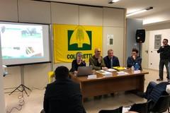 In Puglia diminuiscono le imprese agricole condotte da giovani