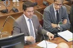 Xylella: colpiti in Puglia da 8 mila a 770 mila ettari in 5 anni