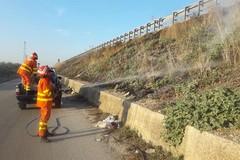 Incendio di sterpaglie sulla complanare-autostrada e sulla SS. 170