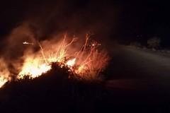 Alta Murgia: in fumo 270 ettari di Parco, Andria in testa