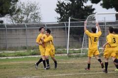 Nuova Andria Calcio: vittoria per i giovanissimi, pari in rimonta per la Juniores