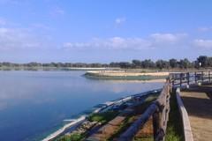 Per carenze infrastrutturali e reti colabrodo la Puglia perde l'89% dell'acqua meteorica