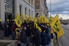 Manovra, Coldiretti Puglia: in fumo olivicoltura pugliese 317mln euro persi e 1mln giornate lavoro azzerate