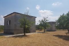 Deserta la gara per l'affidamento in concessione di Bosco Finizio e pineta di Castel del Monte