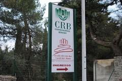 Fondazione Bonomo: la speranza si chiama Parco dell'Alta Murgia