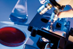 Andria inserita nell'indagine di sieroprevalenza dell'infezione da virus SARS-CoV-2
