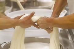 "La Burrata di Andria IGP al ""True Italian Taste"" di Bruxelles"