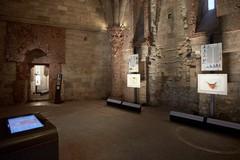 Castel del Monte, nuove modalità di ingresso dal 25 luglio