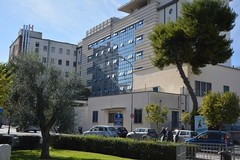 Cade da un'impalcatura, uomo di Bisceglie salvato dai radiologi dell'ospedale Bonomo di Andria