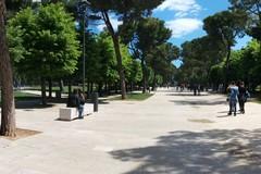 """Scarso il verde urbano ad Andria, appena lo 0,3%: """"Con recovery fund creare foreste urbane"""""""