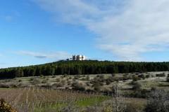 """Al via """"Alta Murgia pulita"""", la campagna di Legambiente che coinvolge anche Andria"""
