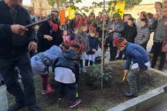 'Festa dell'Albero' appuntamento irrinunciabile dell'Istituto Comprensivo 'Don Bosco-Manzoni'