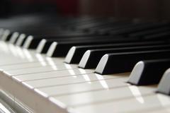 """Accademia Musicale Federiciana: al via il 5° appuntamento con il """"Salotto Musicale"""""""