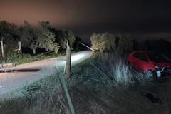 Auto esce di strada ed abbatte otto pali di sostegno della telefonia: conducente ferito