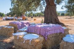 In agriturismi vendite dimezzate di cibo, vino ed olio evo per parziale chiusura ristorazione