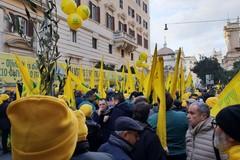 Coldiretti, mobilitazione Salvaolio: «Oggi il decreto su gelate e prossima settimana quello su xylella»