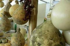 Cresce in Puglia il cibo di strada, ed una azienda su 4 è donna e giovane