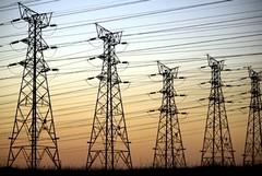 Disservizi nell'erogazione dell'energia elettrica: protesta delle aziende agricole di Andria