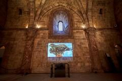 """Mostra a Castel del Monte: """"Il potere dell'armonia. Federico II e il De Arte venandi cum avibus"""""""