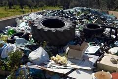 """Ambiente: """"Ad Andria un impianto di compostaggio in contrada Torre di Guardia?"""""""