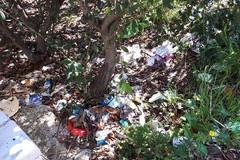 Grandi pulizie nel Parco Europa dopo la denuncia dello scempio ambientale