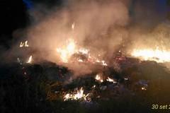Allarme incendi boschivi: Puglia sesta in classifica