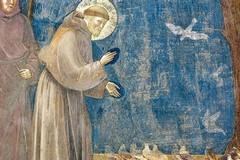 Parrocchia delle SS. Stimmate: Festa del Perdono di Assisi