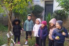 """Scuola dell'infanzia """"Oasi San Francesco"""", viaggio tra le zolle della terra"""