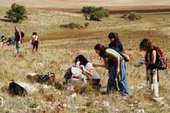 E…State in Murgia: fino all'8 settembre il campo di volontariato naturalistico nel Parco Nazionale dell'Alta Murgia