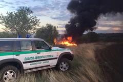 Ancora incendi nel territorio andriese: intervengono i Federiciani