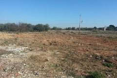 """Coldiretti: """"Bene legge per recuperare suoli agricoli abbandonati"""""""