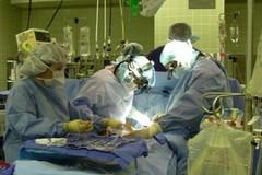 Sanità pugliese: riuscito uno dei primi trapianti di rene cross-over