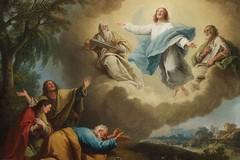 La Trasfigurazione: apice della Bellezza