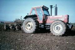 Lavorazioni nei fondi agricoli contro la xylella: emessa ordinanza del Sindaco
