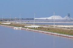 Rapporto Ecomafia 2020: Puglia sale al secondo posto nella classifica generale dell'illegalità ambientale