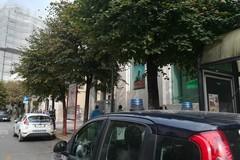 Cane bloccato all'interno del cancello di una banca: intervento della Vegapol e della Polizia locale