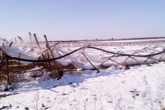 Risarcimento danni da gelo: via alla presentazione delle domande