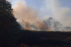 Tre incendi a pochi chilometri dal Castel del Monte. Bruciati 3 ettari di terreno