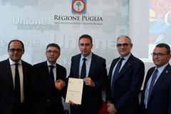 Camminata tra gli olivi, il paesaggio dell'olio in Puglia: presentazione in Regione