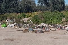 Andria, sporcizia e degrado in via Vecchia Barletta