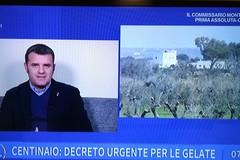 Gelate 2018: il ministro Centinaio ha firmato la richiesta di declaratoria proposta dalla Regione Puglia