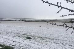 Torna il maltempo sulla Puglia, da domani forte vento e rischio nevicate