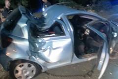 Auto contro un albero sulla provinciale Bisceglie-Andria