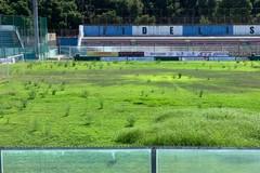 """Terreno di gioco disastroso al """"Degli Ulivi"""" di Andria: manutenzione assente e risposte che non arrivano"""