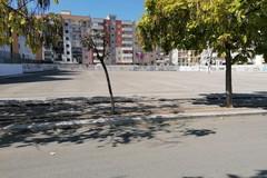 Fermata dei bus in Largo Ceruti, Movimento Pugliese: «Amministrazione comunale ancora in ritardo»