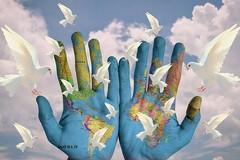 Premio per la Pace: oggi la consegna dei riconoscimenti