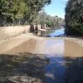 Resta disastrosa la gestione delle strade provinciali e comunali