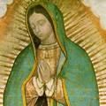 Madonna di Guadalupe, il 12 dicembre è festa ad Andria