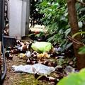 Diario delle inciviltà, Sindaco Bruno: «Rifiuti dei bivacchi serali all'interno della scuola Don Bosco»