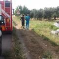 Incidente sulla ex sp 231 tra Corato ed Andria: auto di ribalta ed il conducente rimane ferito